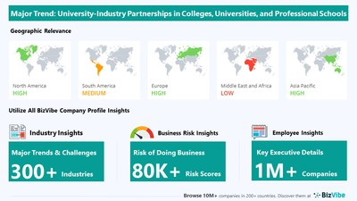 Snapshot of BizVibe's colleges, universities, and professional schools industry group and product categories.