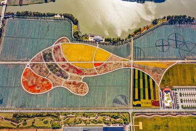 Map of fish-shaped rice fields in Nanhu District, Jiaxing